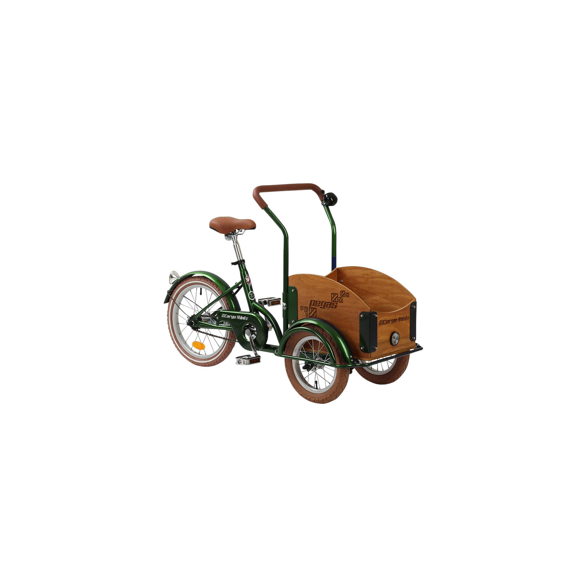 Mini Cargo 1S imagine