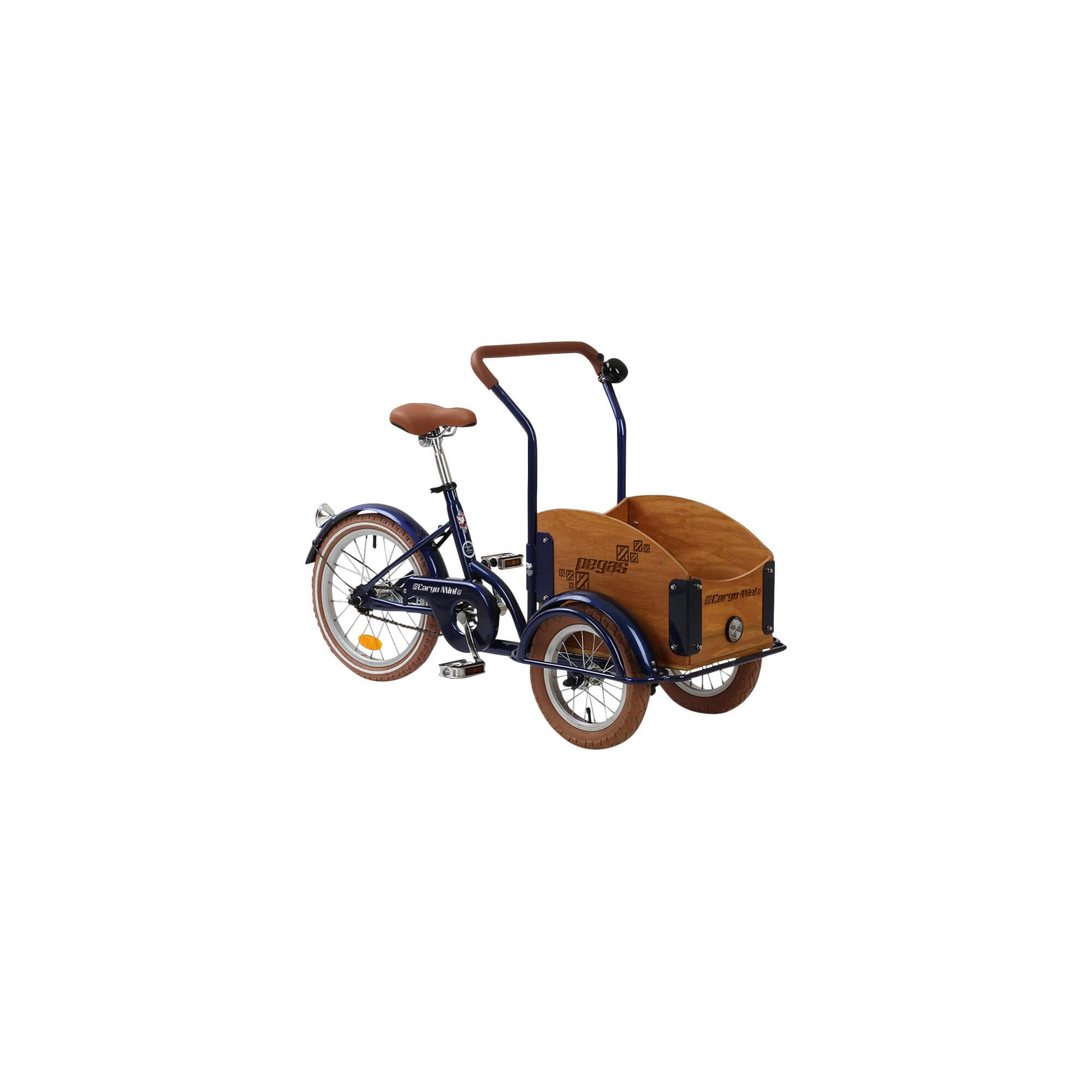 Mini Cargo 1S Pegas